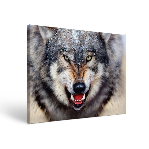 Прямоугольный холст Волк