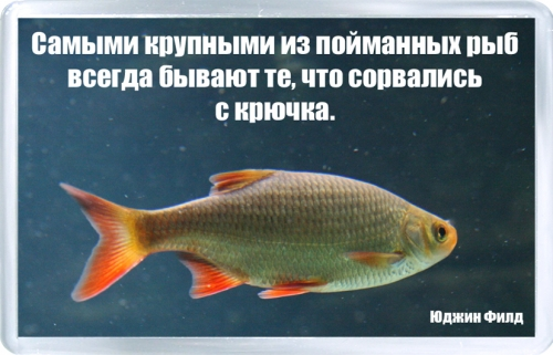 Магнитный подарок: Самая крупная рыба