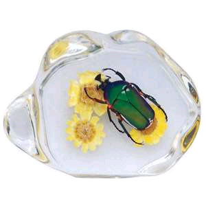 Настольный сувенир: жук бронзовка с цветами