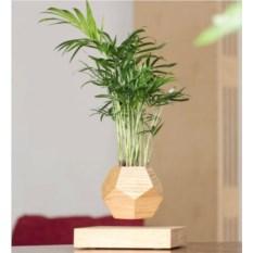 Левитирующий горшок из дерева (без растения)