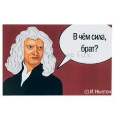 Магнит Ньютон. В чем сила, брат?