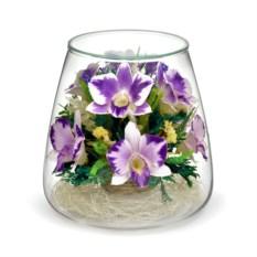 Декоративная композиция из натуральных орхидей