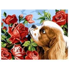 Картина-раскраска по номерам на холсте Щенок и розы
