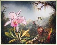 Картина Сваровски Загадочный лес