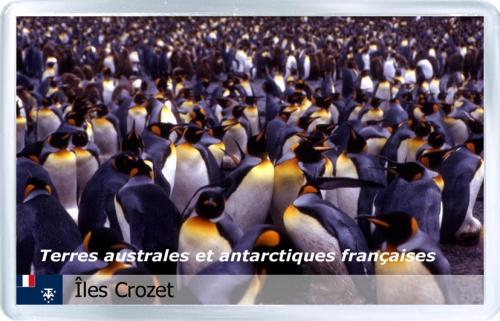 Французские Южные территории. Пингвины