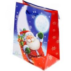Новогодний пакет Санта на санях