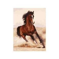 Картина по номерам «Галоп» Бруно Тины Августо