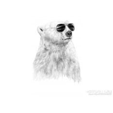 Женская футболка Bear