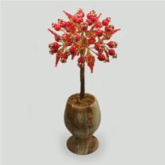 Дерево из коралла Где обитает любовь