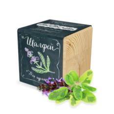 Эко куб для выращивания растений Специи