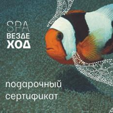 Подарочный сертификат «SPA-Вездеход»