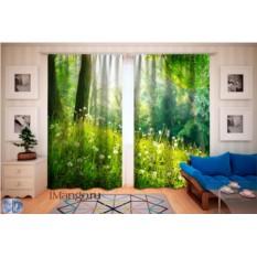 Фотошторы Весенний лес
