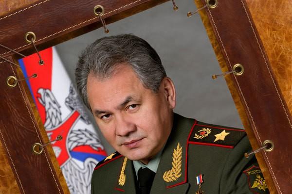 Картина из кожи Сергей Шойгу ElolE Interior