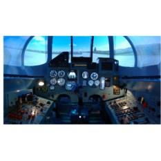 Виртуальное пилотирование (60 мин.)