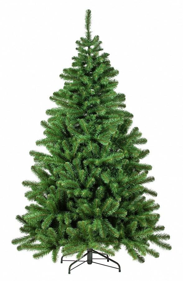 Ель Триумф Вирджиния зеленая.  215 см.