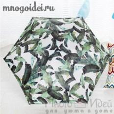 Зонт Вечнозеленый рай