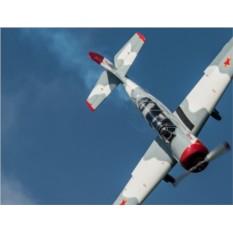 Подарочный сертификат Полет на спортивном самолете ЯК-52