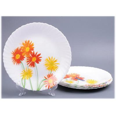 Набор обеденных тарелок