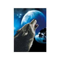Набор для вышивки стразами «В ночи»