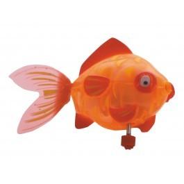 Золотая рыбка Глэдис