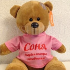 Мягкая именная игрушка Медведь в розовом