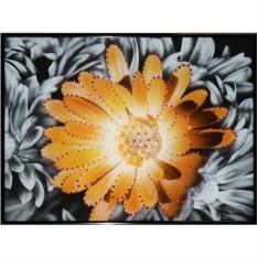 Картина Swarovski Контраст цвета - хризантема