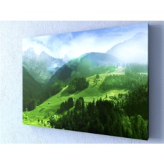 Фотокартина Альпийские луга