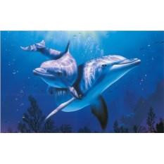 Картина по номерам 40х50 см Дельфины