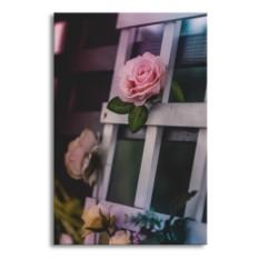 Картина Розы на заборе