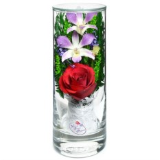 Композиция из розы и орхидеи в подарочной упаковке
