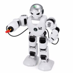 Умный робот Alpha Companion RC Robot 2.4G
