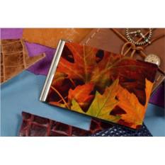 Зажим для денег  Осенние листья