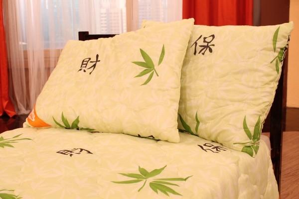 Комплект пастельного белья Ночная птица (одеяло и подушка)