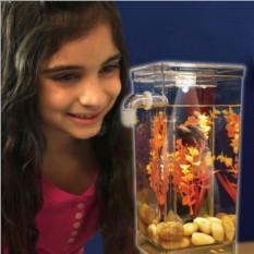 Самоочищающийся аквариум My Fun Fish