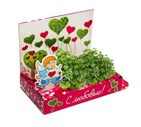 Живая открытка «Вырасти любовь»