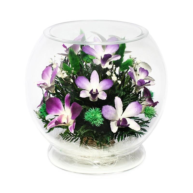 Орхидея девушке в подарок 74