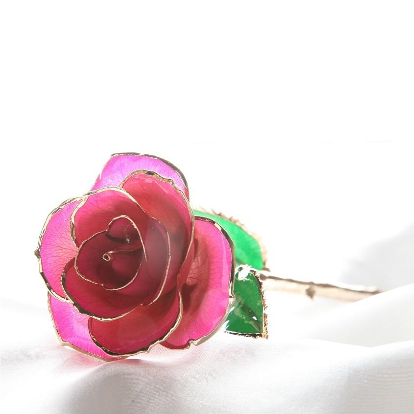 Розовая золотая роза