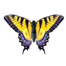Электронная бабочка в банке «Желтый Парусник»
