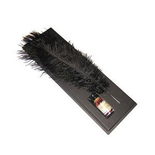 Письменный набор: перо страуса, чернила.