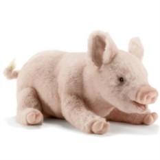 Мягкая игрушка Свинка Hansa