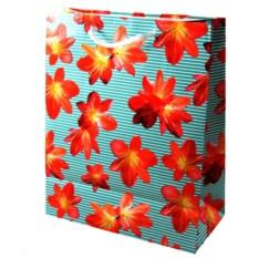 Пакет для подарка Весна