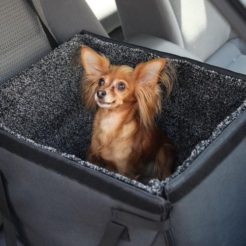 Автогамак OSSO Car для перевозки маленьких собак