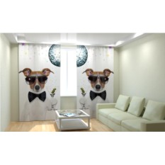 Фотошторы Крутая собака