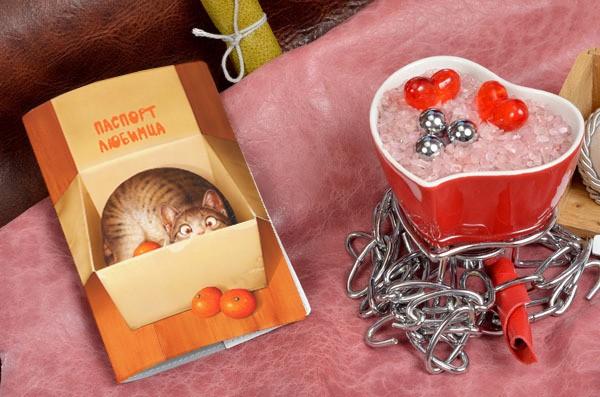 Обложка для ветеринарного паспорта Кот в коробке