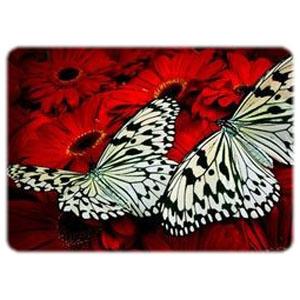 Романтический ужин среди бабочек
