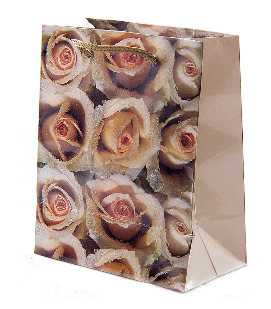 Бумажный пакет для подарков
