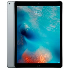 Apple iPad Pro 12.9 256Gb Wi-Fi Space Gray