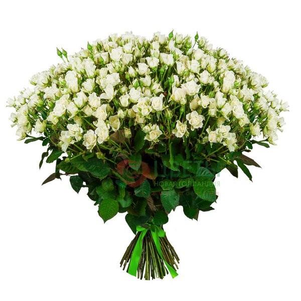 Букет роз Snowflake (101 шт)