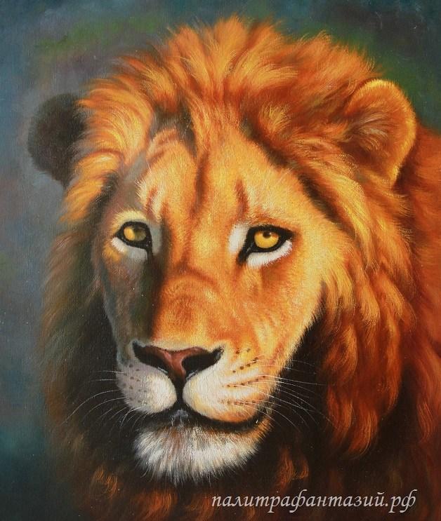 Картина Лев. Царственный взгляд