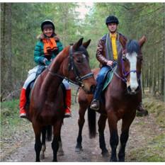 Романтическая прогулка на лошадях для двоих